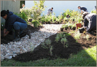Markham Museum Rain Garden Demonstration Project