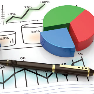 budgets business plans annual reports